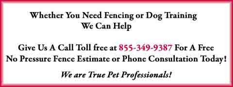 PA Dog Fence|Philadelphia Dog Fence